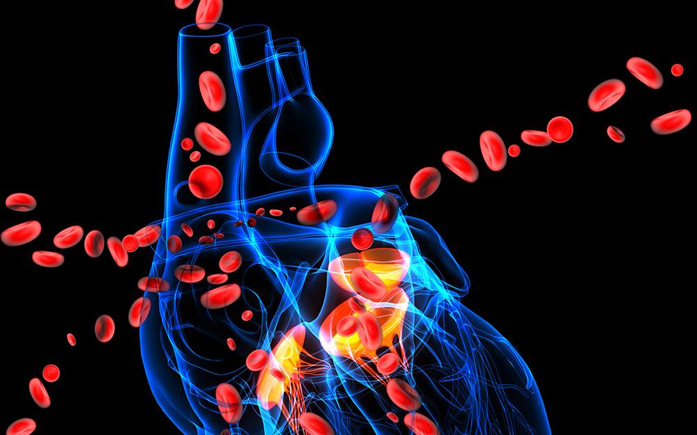 The Cedars-Sinai Specialist Aortic Service and Acute Aortic Dissection teaser image