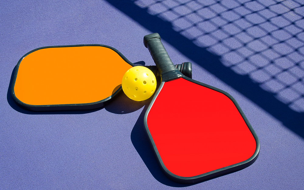 Pickleball Anyone? teaser image